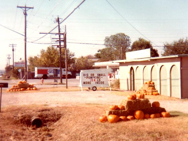 The Grass Patch 1978