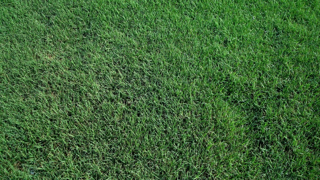 how to cut bermuda grass